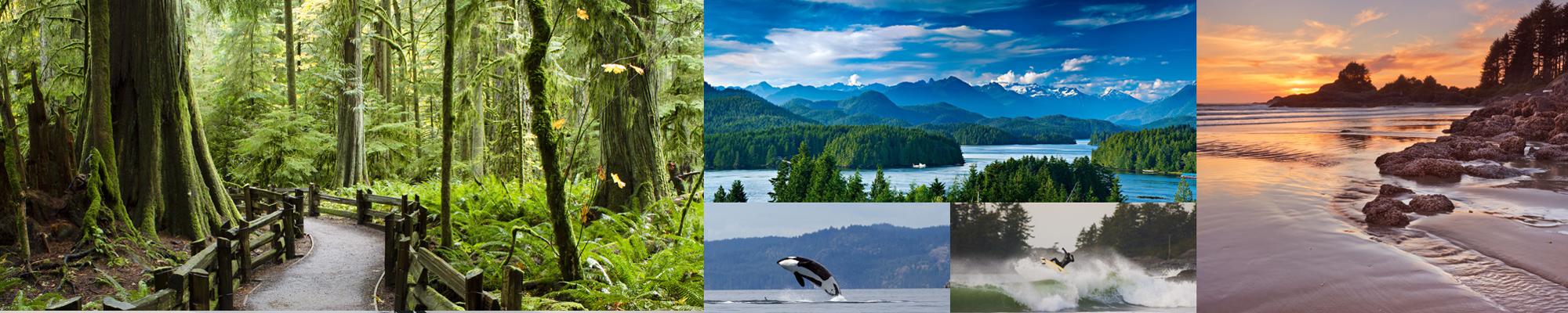 parco nazionale Pacific Rim Canada