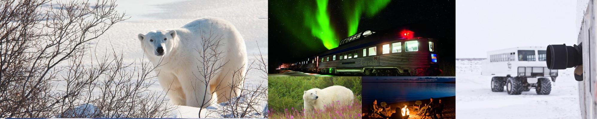 parco nazionale di Wapusk Canada