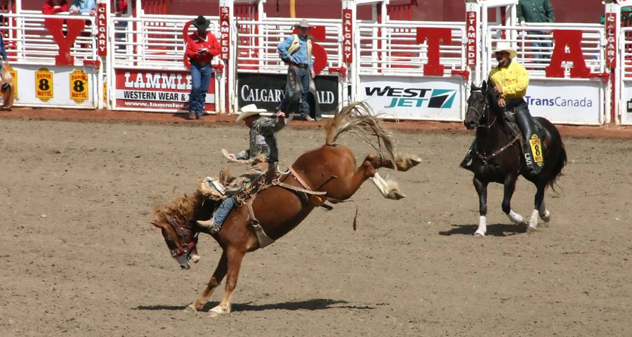 Calgary Stampede rodeo in Canada