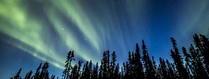 l'aurora boreale nel territorio canadese Yukon