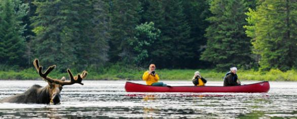 in barca su un fiume in Canada