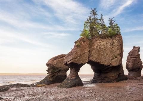 New Brunswick Canada: natura