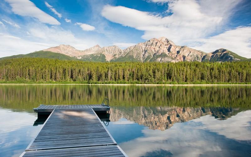 bungalow fronte lago con alci, renne e caribu che passeggiano davanti a te